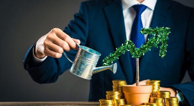 Роль финансовой функции в организационных процессах